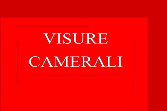 Visure Camerali Pratiche Aziendali